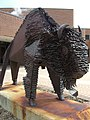 Gallaudet Bison.jpg