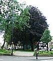 Garden at Parkgrove Terrace (geograph 4145370).jpg