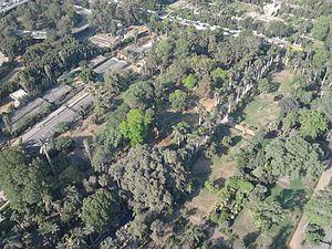 Gezira Island - Image: Gardens of Gezira Island