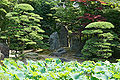 Genchuji Tottori13n4592.jpg
