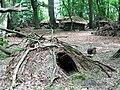 General View of Medieval Village, Thunderdell Wood, Ashridge - geograph.org.uk - 1387179.jpg