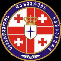 Georgian Intelligence Service COA