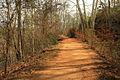 Gfp-georgia-high-falls-state-park-nature-trail.jpg