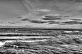 Gfp-illinois-beach-state-park-monochrome-picture-lake-michigan.jpg