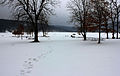Gfp-wisconsin-devils-lake-state-park-walking-to-the-lake.jpg