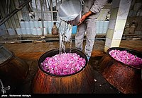 Výroba Golabu v Qamsaru - Kashan 18.jpg