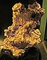 Gold mass (alluvial gold) (Kalgoorlie region, Western Australia) 2 (16992820417).jpg