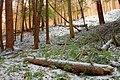 Golden Eagle Trail (Full Hike) (4) (11142394174).jpg