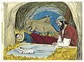 Gospel of Luke Chapter 2-2 (Bible Illustrations by Sweet Media).jpg