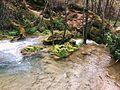 Gostiljski vodopad 3, Zlatibor.jpg