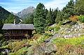 Grand chalet Flore-Alpe et Clochers d'Arpette.JPG
