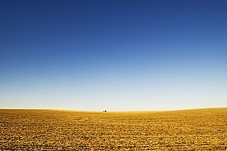 Great Plains broad expanse of flat land west of the Mississippi River and east of the Rocky Mountains in the United States and Canada