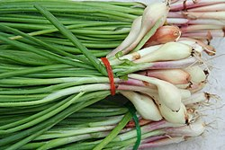 Green Onions, spring or scallions
