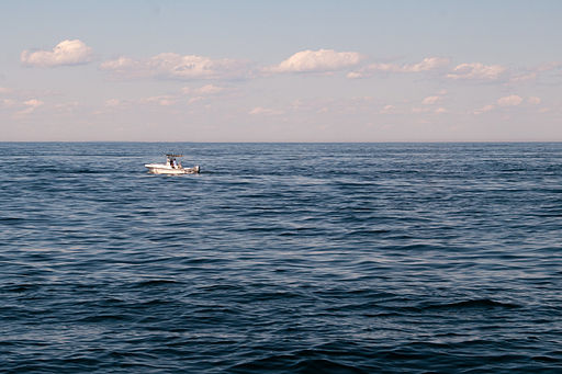 Gulf of maine whale watching 08.07.2012 21-54-57