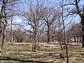 Händelö, den 6 april 2007, bild 8.JPG