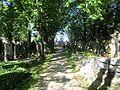 Hřbitov Střešovice 12.jpg