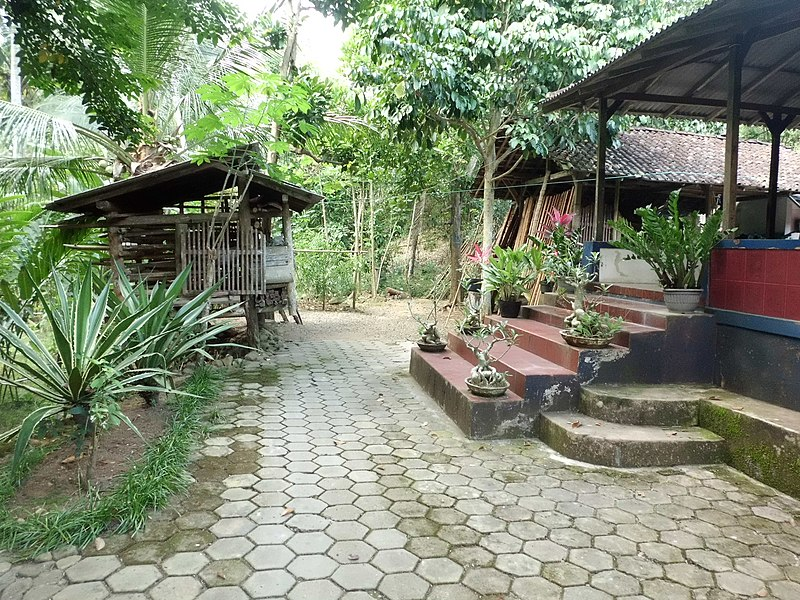 File:Halaman Rumah - panoramio.jpg