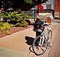 Halifax, NS (CA) (9983364743).jpg