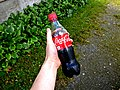 Hand holding Coca-Cola bottle.jpg