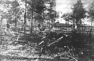 Hans von Blixen-Finecke - The plane of von Blixen-Finecke at the crash site