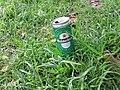 Heineken lata .jpg