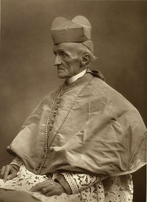 Henry Edward Manning - Cardinal Manning