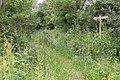 Herefordshire Trail near Brilley - geograph.org.uk - 193392.jpg