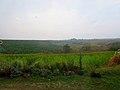 High Ridge - panoramio.jpg