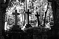 Highgate Cemetery London-Dierking.jpg