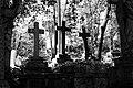 Highgate Cemetery London-Dierking.jpg