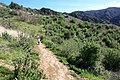 Hiking Towsley Canyon (2323923761).jpg