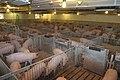 Hog farming in Kansas 05.jpg