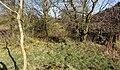 Holehouse Mill ruins and raised area, Sorn, East Ayrshire.jpg