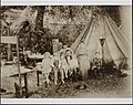 Hollingsworth family at a migrant worker camp, Hopland, California, about 1906.jpg