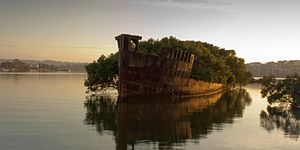 Homebush Bay - The hull of SS Ayrfield in Homebush Bay