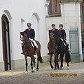 Horses race.jpg