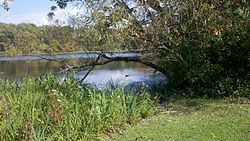 Horseshoe Lake at North Union Shaker Historic Site.jpg