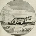 Iacobi Catzii Silenus Alcibiades, sive Proteus- (1618) (14769487183).jpg