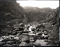 Iao Valley, (03), photograph by Brother Bertram.jpg