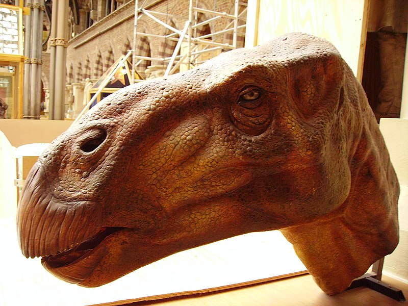 Walking With Dinosaurs: Extinct or Extant? thumbnail
