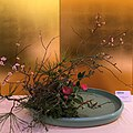 Ikebana International Paris 2019 (42).JPG