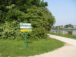 Ile Charlemagne-Loire a velo.JPG