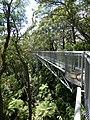 Illawarra Fly - panoramio.jpg