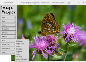 ImageMagick 6.0.6 on Knoppix 4.0.2