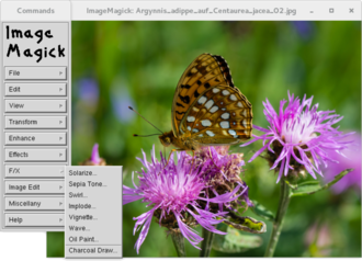 ImageMagick - Image: Image Magick screenshot