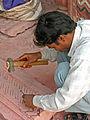 India-6144 - Flickr - archer10 (Dennis).jpg