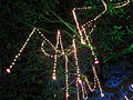 India - Chennai - Pongal festival lights 05 (6319124433).jpg
