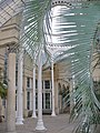 Inside the Great Conservatory - geograph.org.uk - 689685.jpg