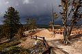 Inspiration Point, Bryce Canyon National Park (3447056676).jpg
