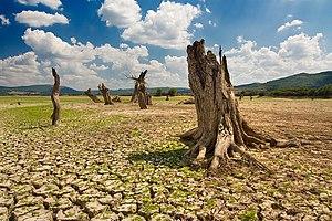 Ivaylovgrad Reservoir, Haskovo Province, Bulgaria